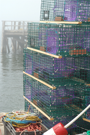 lobster_traps